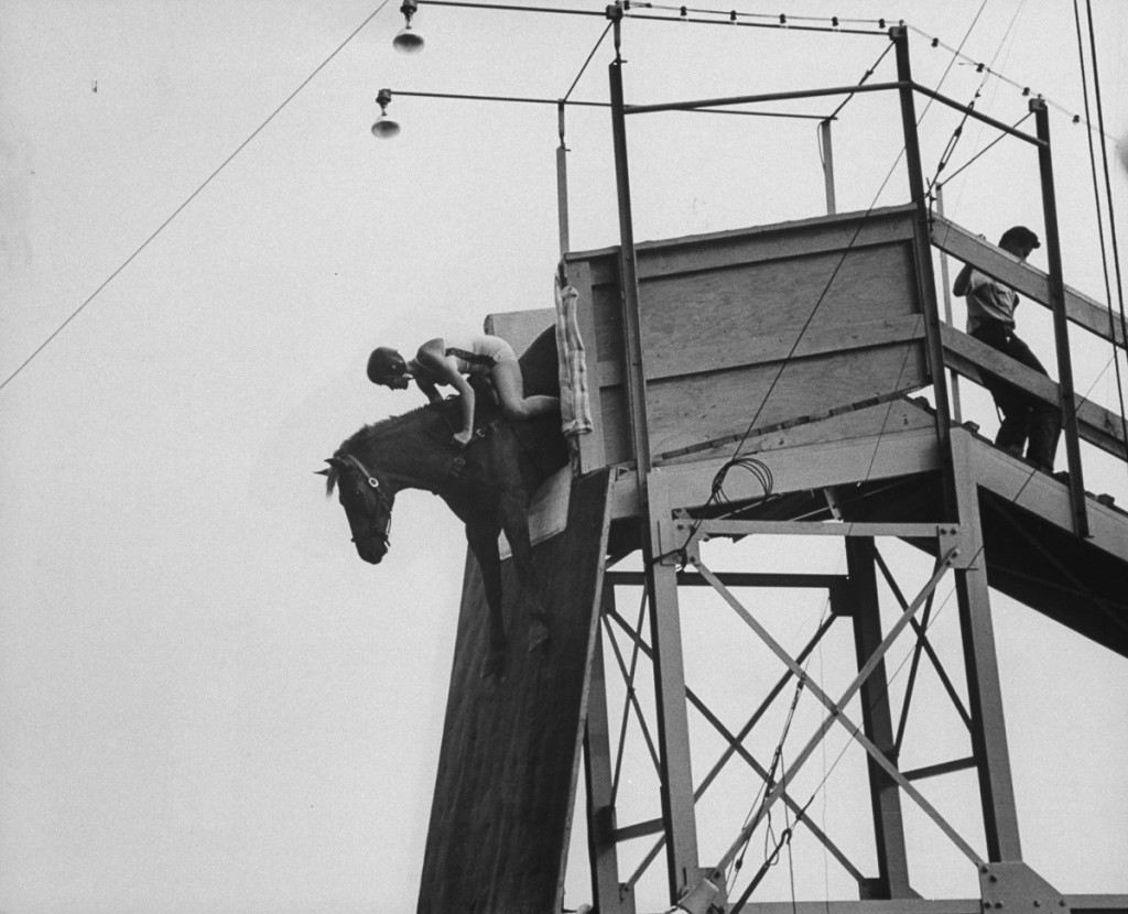 Ready to jump the diving horse extends forefeet.  (Photo by Peter Stackpole/The LIFE Picture Collection/Getty Images)