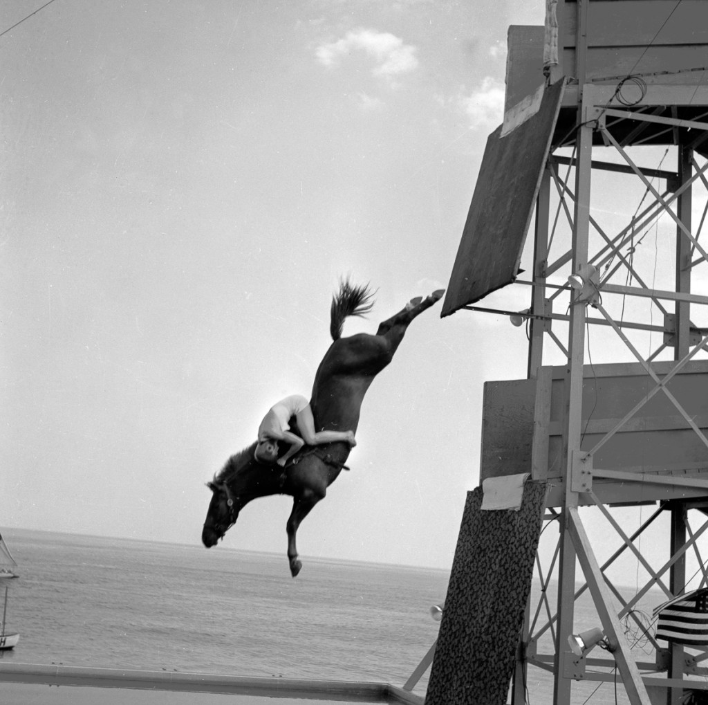 circa 1955:  A diving horse mid-dive with the rider clinging to its neck.  (Photo by Three Lions/Getty Images)