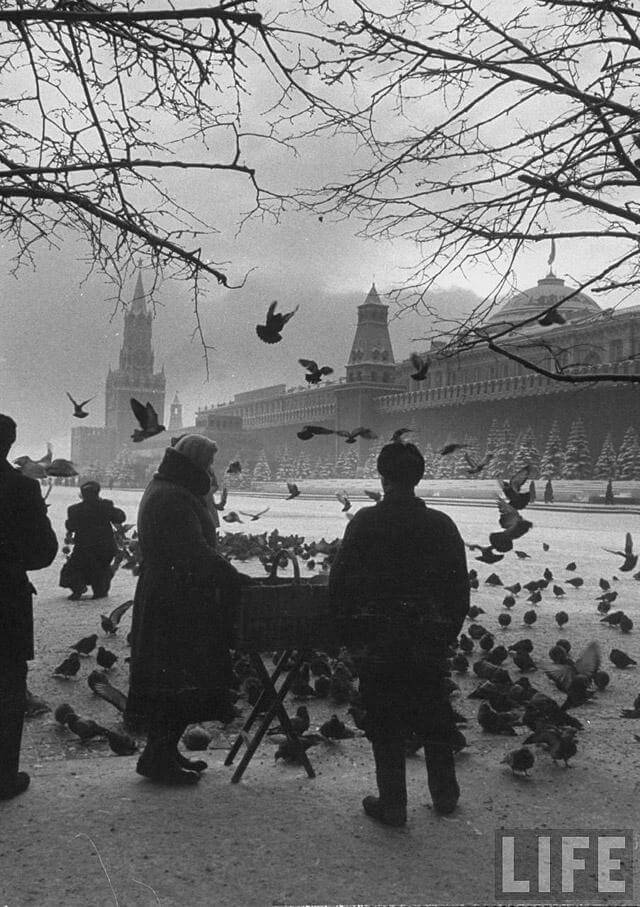 moscow59-01