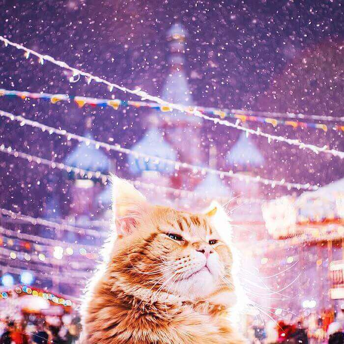 moscow-city-looked-like-a-fairytale-during-orthodox-christmas-17__700_mini