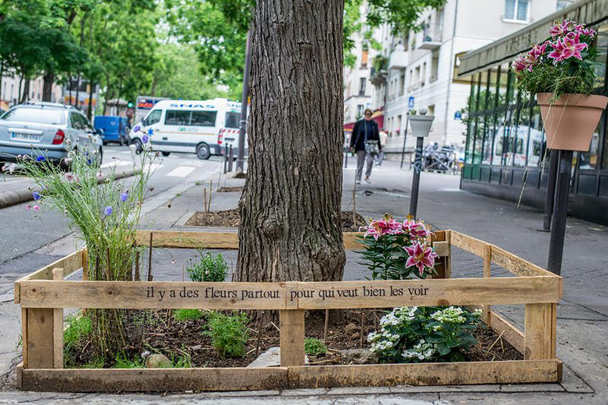 plant-urban-gardens-anyone-law-paris-5ajpg