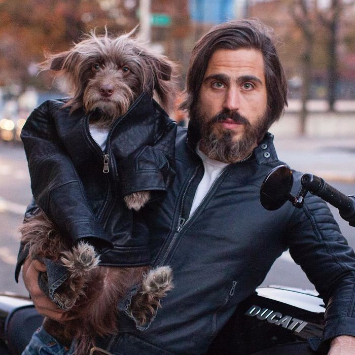 dog-dad-matching-outfits-topher-brophy-rosenberg-34-5835973669fbd__700