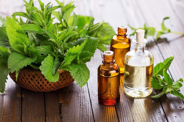 peppermint-oil-1