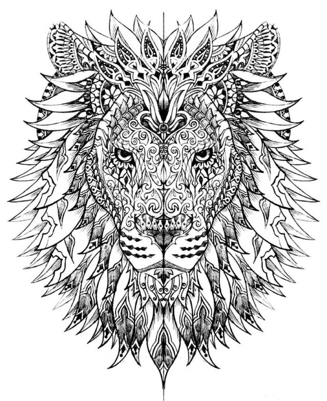 1451454242adult-difficult-lion-head