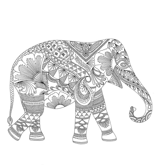 Elephants-Coloring-Pages-Line-Drawings-coloring-For-funny-Elephants-Coloring-Pages-Line-Drawings-Draw-277CF17A00000578-3033867-image-a-2_1428848270147.jpg