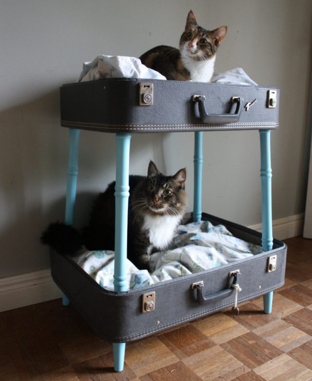 House-for-a-cat-let-the-pet-also-have-its-own-personal-space-1